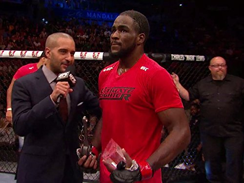 The Ultimate Fighter 19 Finale