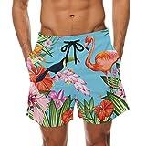 Flamingo Pattern Print Men's Swim Trunks Swimming Beach Shorts Watershort