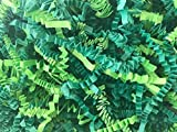 Mixed Green Crinkle Cut Paper Shred Filler for Packing and Filling Gift Baskets 1 Pound