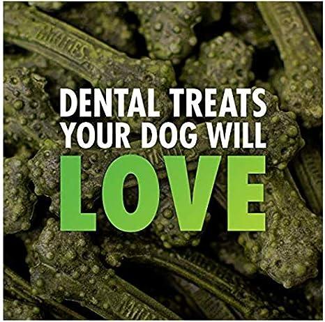 Perfect for Tiny // Small Dogs under 40 lbs Dental Chews for Dogs, VetIQ Minties Dog Dental Bone Treats
