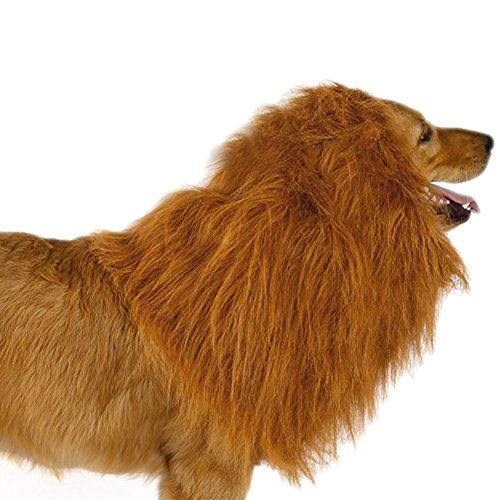 Ridgeback Lion Costume (Lion Mane Costume for Dog,Lion Wig,Dog Clothes,Fancy Hair,Large Pet Festival Party. (Yellow))