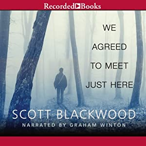 We Agreed to Meet Just Here Audiobook