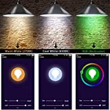 AXTEE Smart Light Bulbs