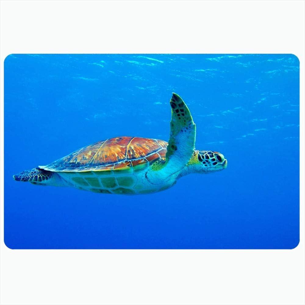Alfombra de baño interior para baño Alfombrillas antideslizantes Mydas Turtle Chelonia Bonaire Natación Snorkeling Blue Sports Australia Zanzibar Recreación Papua Baño Ducha Felpudo Alfombrilla de gom
