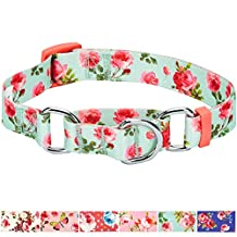 Blueberry Pet Spring Scent Inspired Rose Print Safety Training Martingale Dog Collar, Turquoise, Small, Heavy Duty Adjustable Collars for Dogs