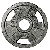 Champion Barbell Olympic Grip Plate, 10 lbs For Sale
