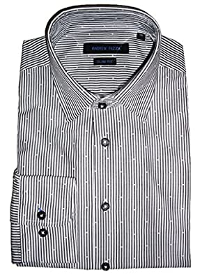 Andrew Fezza Men's Striped Dress Shirt