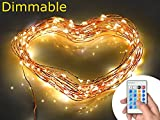 Xking 33ft / 10m 100 Leds Copper Wire String Lights / Christmas, Wedding and Party Decorative Lights / Controllable:flash , Strobe , Fade (Warm White)