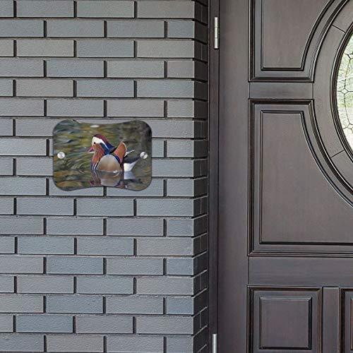 Door Sign Mandarin Duck Custom Personalized Hanging Wall Art Primitive for Cafe Shop ()