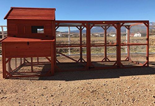 - Chicken Coop! The Chicken Coop Company specializes in Chicken Huts and quality Coops.