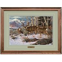Reflective Art, A Breath of Glory, Walnut Framed, 26 by 34-inch
