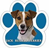 Jack Russell Car Magnet With Unique Paw Shaped