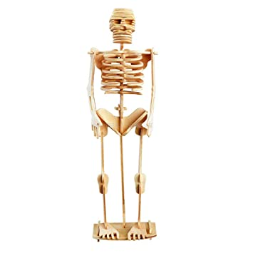 DIY 3D Puzzle Wooden Jigsaw Human Skeleton Mummy for