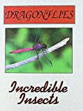 img - for Dragonflies (Incredible Insects) book / textbook / text book