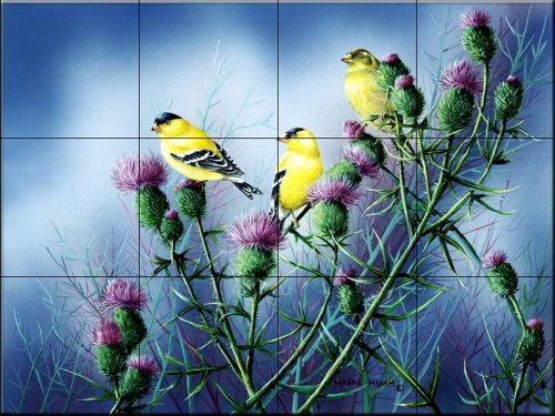 Thistle Ceramic (Ceramic Tile Mural - American Godfinch and Thistle - by Wanda Mumm - Kitchen backsplash / Bathroom shower)