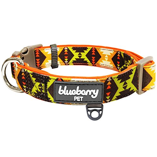 Blueberry Pet 2 Colors Soft & Comfy Vintage Tribal Pattern Padded Dog Collar, Extravagant Orange, Large, Neck 18
