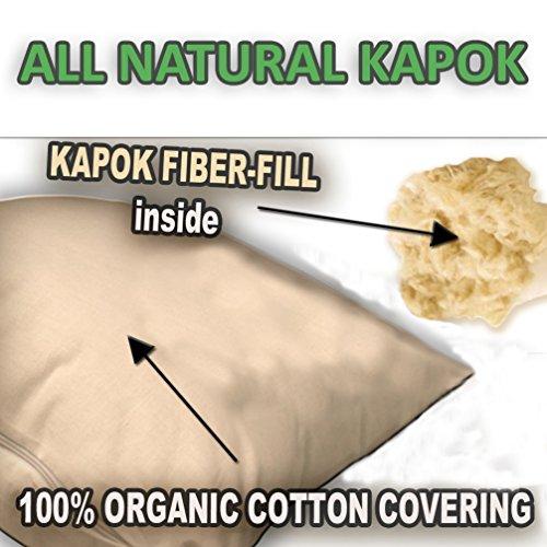 Kapok Fiber Filled Premium 2-PACK - Kapok Fill Pillows With