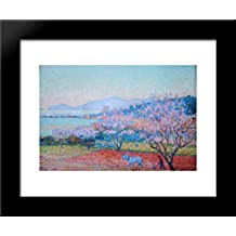 The Almond Flowers 20x24 Framed Art Print by Theo van Rysselberghe