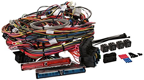 Painless 60218 Fuel Injection Wiring Harness, Extra Length (Painless Fuel Injection Wiring)