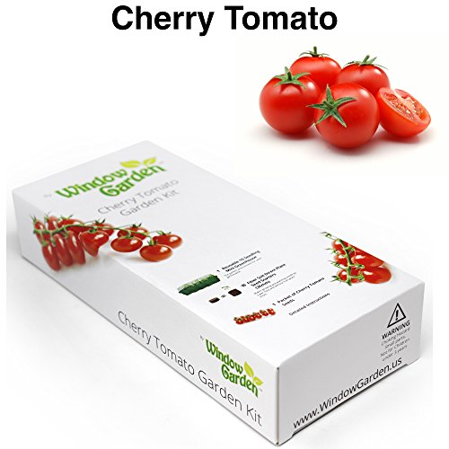 Garden Starter Kit (Cherry Tomato) Grow a Garden by Seed. Germinate Seeds on Your Windowsill then Move to a Patio Planter or Vegetable Patch. Mini Greenhouse System Make's it Foolproof, Easy and Fun. (Tomato Seed Starter Kit)