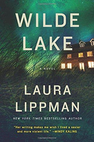 Book Cover: Wilde Lake: A Novel