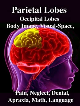 Parietal Lobes: Occipital Lobes, Body Image, Visual-Space, Pain, Neglect, Denial, Apraxia, Math, Language by [Joseph, R.]