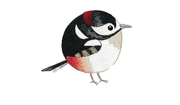 Naturaleza Weaved en hilos, increíble bebé pájaros Reino [Roly ...