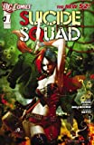 img - for Suicide Squad (2011-) #1 book / textbook / text book