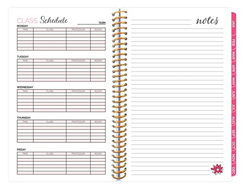 bloom daily planners 2018 Calendar Year Daily Planner - Passion/Goal Organizer - Monthly Weekly Agenda Datebook Diary - January 2018 - December 2018 - 6