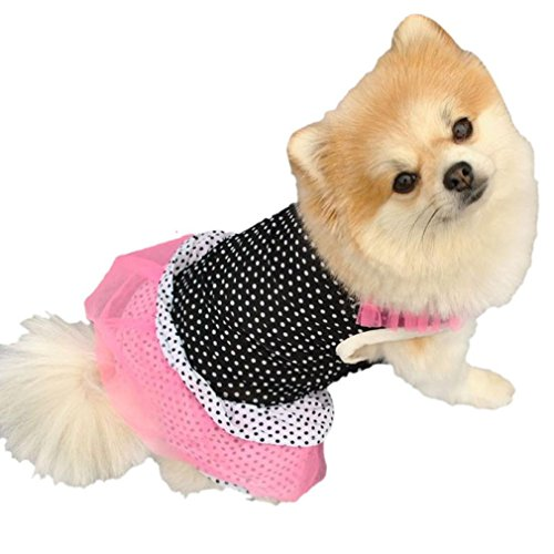 2017 Hot Pet Dress! AMA(TM) Pet Puppy Small Dog Clothes Polka Dots Lace Vest Shirt Dress Doggy Apparel Costume (M, (Doggy Clothing)