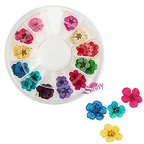 QIMYAR Nail Art Wheel 3D Flower Dry Powder Flowers Nail Decorative Manicure Tips Product 12 Color