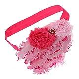 TOOGOO(R) 1 Pc Lovely Feather Head Wear Headband for Baby Newborn Toddler Girls