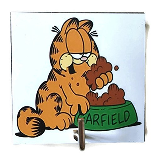 Agility Bathroom Wall Hanger Hat Bag Key Adhesive Wood Hook Vintage Garfield's Photo