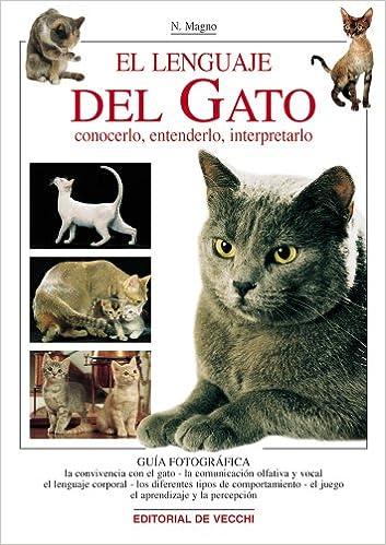 El lenguaje del gato (Spanish Edition): N. Magno: 9788431530921: Amazon.com: Books