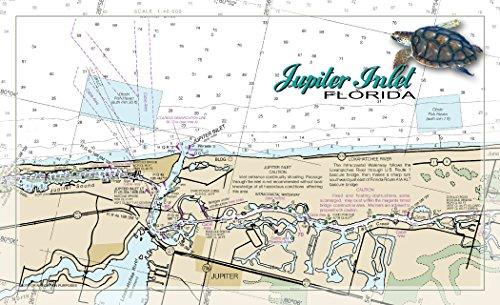 Northwest Art Mall FL-9385 Jupiter Inlet Turtle Florida 11
