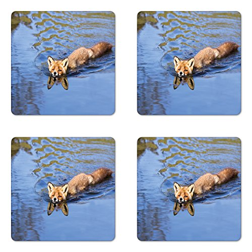- Ambesonne Fox Coaster Set of Four, Cute Fox Swimming in Blue River Natural Life Mammal Wild Animal Image Print, Square Hardboard Gloss Coasters for Drinks, Pale Blue Brown Cream