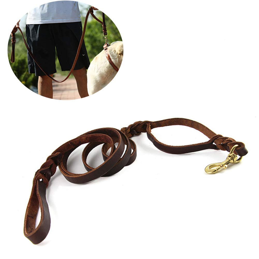 DOG CARE 6ft Genuine Leather Dog Leash with Double Handle Soft and Durable Braided Dog Training Leash for Medium/Large Dogs