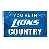 NFL Detroit Lions In Country Flag with Grommets, 3 x 5-Foot