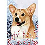 Cheap Best of Breed Winter Berries Full Size Flag Tan and White Pembroke Welsh Corgi
