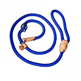 Adjustable Nylon Dog Pet Rope Products Slip Pet Dog Whisperer Cesar Slip Training Leash Lead Collar, 4-Feet (blue)