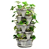 The stackable planter is great for growing strawberries, herbs, succulents, flowers, and more in a small amount of space! The planter design has water reservoirs on each layer. With this planter you will not need to worry about over-watering your pla...