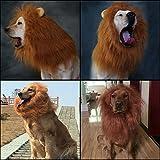 BubbyBear Dog Lion Mane Wig Costume,Funny Dog Halloween Christmas Festival Photo Shoots Costume Winter Warm Scarf Dog Lion Wig with Tail