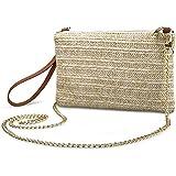 Straw Zipper Small Cross body bag Wristlet Clutch Womens Purse (Brown)