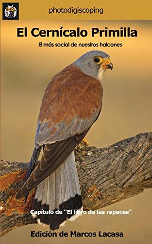 Amazon.com: El Cernícalo Primilla.: El más social de nuestros halcones. (El libro de las rapaces nº 4) (Spanish Edition) eBook: Marcos Lacasa, Adolfo Ventas ...