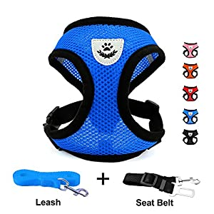 INVENHO Mesh Harness with Padded Vest for Puppy and Cats No Choke Design Ventilation Gift with One Leash & Seat Belt (Medium, Blue)