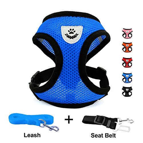 INVENHO Mesh Harness with Padded Vest for Puppy and Cats No Choke Design Ventilation Gift with One Leash & Seat Belt(Blue Small)