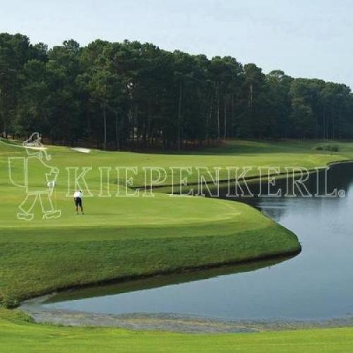 Kiepenkerl Golfrasen Masters Nachsaat 10 kg, Rasensamen, Rasensaat