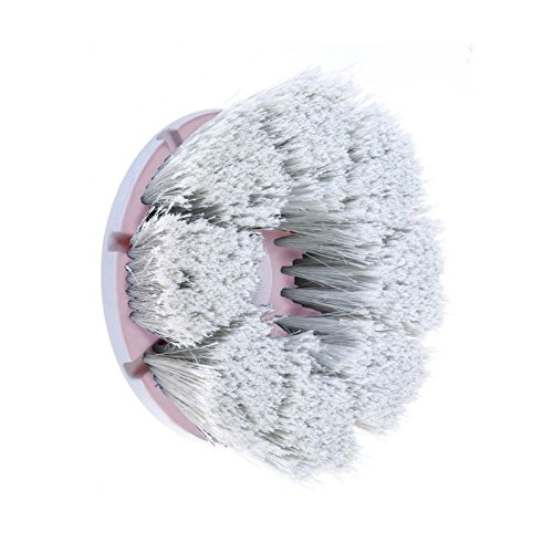 Motor Scrubber Long Bristle Brush With Window, 1 Each