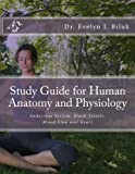 img - for Study Guide for Human Anatomy and Physiology: Endocrine System, Blood Vessels, Blood Flow and Heart book / textbook / text book