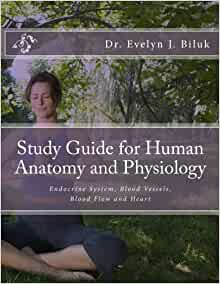 Cardiovascular System: Blood Physiology Study Guide ...